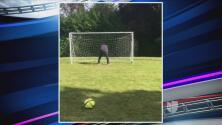 Ibrahimovic prueba su puntería contra el trasero de un amigo