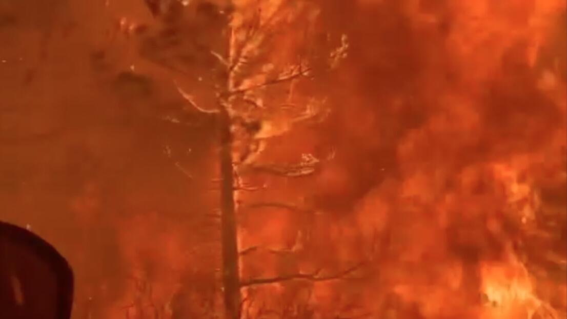 Llamas queman al menos el 8 por ciento del Parque Nacional Sequoia en California