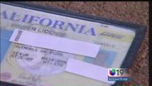 ¿Dudas para expedir licencias de conducir?