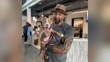 """Dave Bautista ofrece una recompensa de $5 mil para encontrar al """"enfermo"""" que abusó de su perro"""