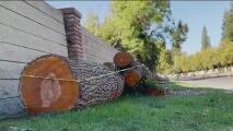 Protege tu patrimonio de cualquier fenómeno natural con un seguro de vivienda