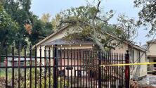 Árboles caídos y viviendas afectadas: los daños materiales que dejó un posible tornado en el condado de Harris