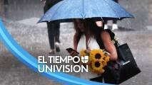 No salgas de casa sin el paraguas: la mañana de este lunes estará pasada por lluvia en Chicago