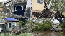 Árboles fueron arrancados desde la raíz por la fuerza del huracán Nicholas en Houston