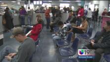 Miles acudieron al DMV para solicitar su licencia