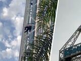 Hombre trepa a torre de 300 pies en parque de California y desata el pánico entre los visitantes