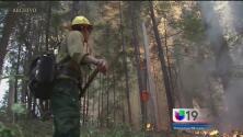 Alerta por temporada de incendios y sequía
