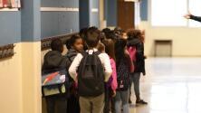 'Chicago en un Minuto': Encuentran chinches en la cafetería de una escuela en North Lawndale