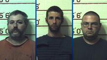 """""""No hay castigo demasiado grande"""": hombres que violaron a animales de sus granjas deberán cumplir hasta 40 años de cárcel"""