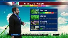 El tiempo: niveles de polen