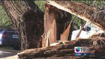 Daños en Natomas por el paso de un tornado
