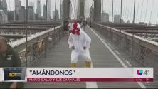 Acá entre Nos: Conoce la música de Mario Gallo y sus carnales