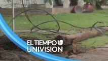 Escuelas cerradas, árboles caídos y varios hogares sin luz: El panorama en Brazoria tras el paso de Nicholas
