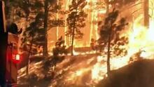 Humo de los incendios forestales podría hacer a las personas más susceptibles al coronavirus