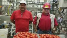 Conoce al mexicano que le da el toque secreto a una famosa salsa de tomate