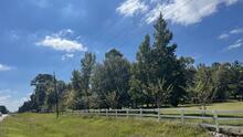 Hallan a Christopher Ramírez en esta área boscosa del condado Grimes al norte de Houston