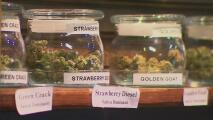Nueva ley permitiría el uso de marihuana medicinal en escuelas de California
