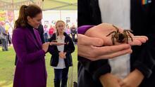 """""""Son geniales, ¿no?"""": Kate Middleton sostiene una tarántula en sus manos"""