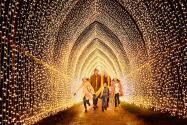 "Jardín botánico del centro de Texas se ilumina como un ""bosque mágico"" para la época decembrina"