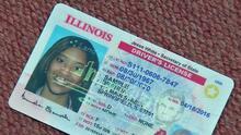 Illinois amplía el programa de citas para solicitar licencias de conducir y otros trámites