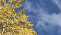 Frente frío traerá temperaturas otoñales para el centro de Texas