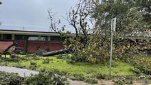 Tormenta Nicholas: residentes de Lake Jackson podrían estar hasta tres días sin electricidad