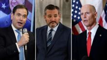 Marco Rubio y Rick Scott apoyan proyecto de ley de Ted Cruz para limitar los mandatos en el Congreso