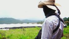 Cansados de las extorsiones y los secuestros, agricultores en México se arman para defenderse de los cárteles