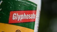 Gobierno mexicano recibe presiones institucionales de EEUU por prohibir el uso del glifosato, según informe