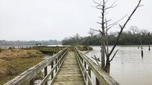 Bay Area Park, un destino gratuito muy cerca de Houston con paisajes únicos