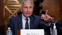 """""""Usted no sabe lo que está hablando"""": el exaltado intercambio entre Fauci y el senador Rand Paul"""