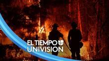 """""""El calentamiento global es en serio"""": diputado mexicano habla sobre cambio climático y los incendios en California"""