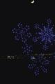 Screen Shot 2020-11-26 at 7.41.59 AM.png
