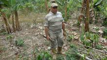Antes exportaban café y ahora sobreviven del trueque: la crisis agrava la pobreza rural en Venezuela