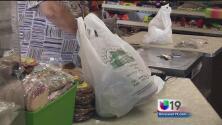 ¿Prohibirán el uso de bolsas plásticas?