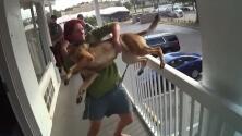 El momento en que un perro es lanzado desde un balcón y su dueña es detenida