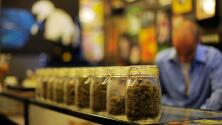 Consumidores de California hacen largas filas para comprar marihuana medicinal