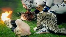 Historias que te dejan frío: Los rituales prehispánicos del Veracruz