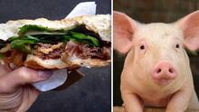 Un trozo de pecho de cerdo: Horrible hallazgo en hamburguesa de famoso restaurante genera polémica