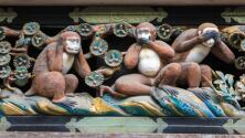 Reflexión: los monos y las bananas