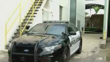 Investigan el hallazgo del cadáver de un hombre detrás de un supermercado en Miami Beach