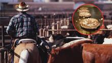 Vaqueros latinos producen la mayoría de la carne que será consumida durante este feriado del Día del Trabajo