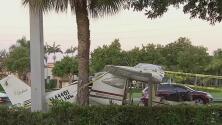 Chocó contra un árbol y un poste: lo que se sabe de la avioneta que cayó sobre una avenida de Miramar