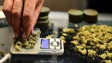 Retiran productos de marihuana por posible contaminación con salmonela en Arizona