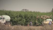 California determina que agricultores no podrán usar agua del Sacramento – San Joaquin Delta
