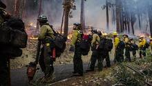 Mueren dos bomberos que combatían incendios forestales en California