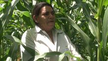 """La pobreza convierte pueblos de Honduras en lugares fantasma: """"Es triste ver a los hijos despedirse"""""""