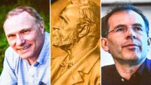 Dos profesores de universidades del Área de la Bahía ganan el Premio Nobel de Economía