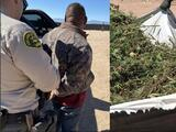 Carteles de la droga roban millones de galones de agua para el cultivo de marihuana en Antelope Valley