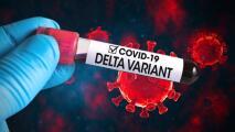 ¿Las vacunas disponibles son efectivas para proteger contra el contagio por la variante Delta? Esto es lo que se sabe